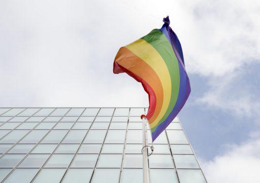 Waalwijk krijgt regenboogzebrapad
